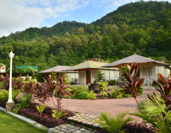 Luxury Tents in Jim Corbett
