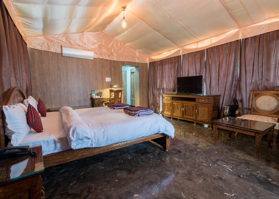 luxury-tent-in-corbett